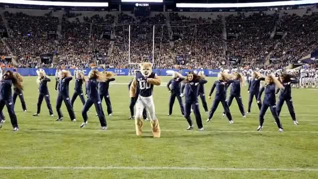 Watch Cosmo the Cougar & the Cougarettes Dance - BYU Vs Boise St 2017 GIF on Gfycat. Discover more related GIFs on Gfycat