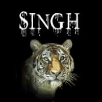 Watch and share Singh Is King GIFs on Gfycat
