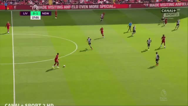 Watch and share Newcastle United GIFs and Soccer GIFs by potepiony on Gfycat