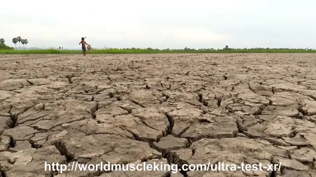 Watch and share Catfish In Dry Soil GIFs and Hand Fishing By Mud GIFs by wigikgej on Gfycat