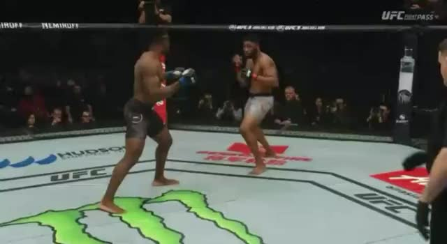 Watch and share Mma GIFs by kazdibiase on Gfycat