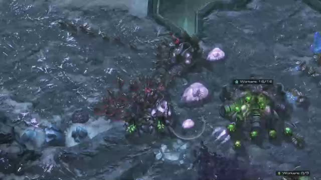 Watch and share Sc2replaystats Balance Map KOTH GIFs by TheSkunk on Gfycat