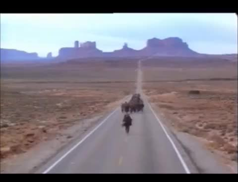 Watch and share Forest Gump Long Run Scene GIFs on Gfycat
