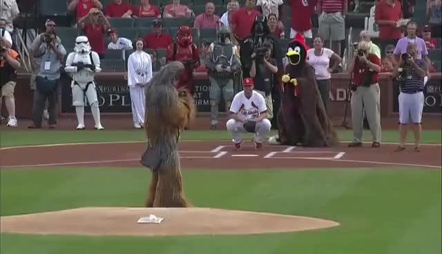Watch and share Chewbacca GIFs and Star Wars GIFs on Gfycat