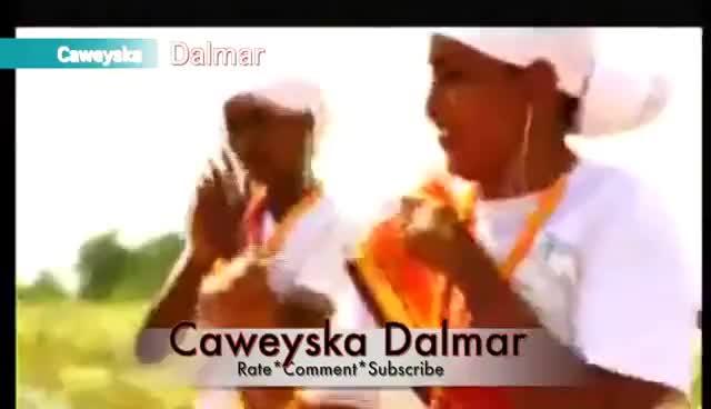 Watch this trending GIF on Gfycat. Discover more beledweyn, bosaaso, dalmar46, dhabe, duire, gaarisa, gal, hargeisa, jibouti, jig, jiga, las, marka, muqdisho, newdalmar, ogaden, qoray, somalia, somaliland, waaberi GIFs on Gfycat