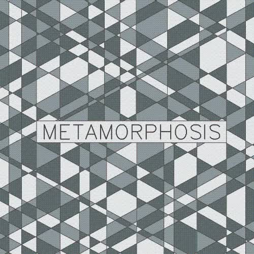 Watch and share Metamorphosis By Alistair Williams GIFs on Gfycat