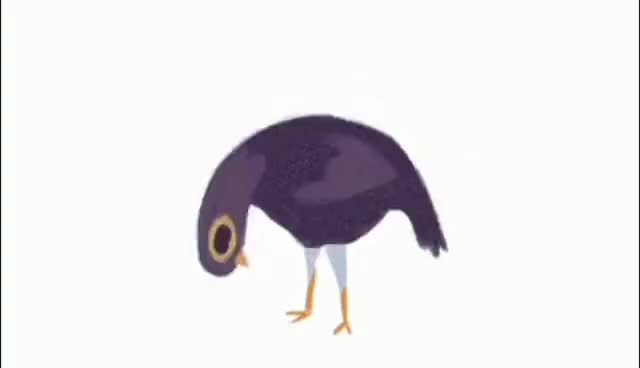 Watch and share Trash Doves GIFs on Gfycat