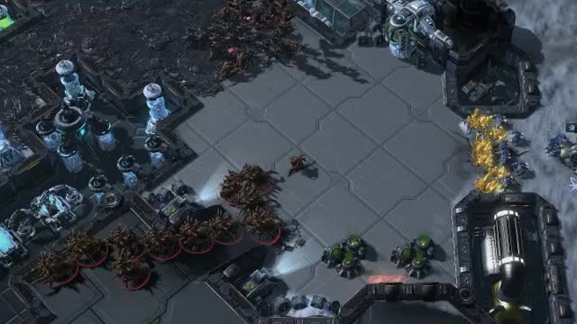Watch and share The Zerg's Move GIFs by TheSkunk on Gfycat