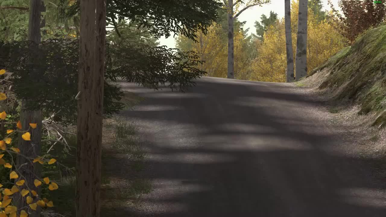 dirtgame, Dirt Rally: going on a roll GIFs