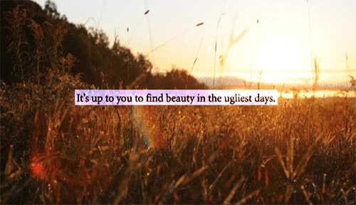 Watch and share Gif Beauty Depression Typography Landscape Inspiration Ugly Sunny Sunset Sadness Sunlight Fields Artists On Tumblr GIFs on Gfycat