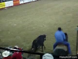 Watch and share Steer Wrestling GIFs on Gfycat