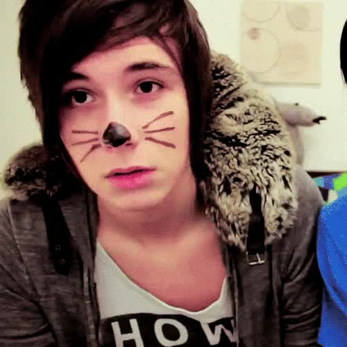 Watch and share Daniel Howell GIFs and Cat Whiskers GIFs on Gfycat