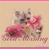 Watch and share Good Morning GIFs on Gfycat