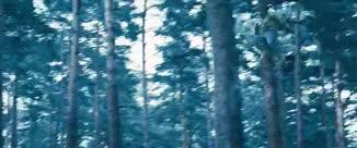 Watch The Justice League GIF on Gfycat. Discover more A:AOU, AOU, Age of Ultron, Avengers, Avengers: Age of Ultron, Black Widow, Bruce Banner, Captain America, Clint Barton, Gifs, Hawkeye, Hulk, Iron Man, MCU, MarvelEdit, My Gifs, My Stuff, Natasha Romanoff, Superhero GIFs on Gfycat