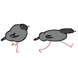 Watch and share Animation GIFs and Pigeon GIFs by kéké on Gfycat