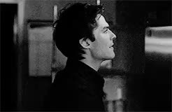 Watch limitless GIF on Gfycat. Discover more and i havent giffed him in a while, damon salvatore, damon stan club, damonedit, idek, im so bored, m, tvd, tvdedit GIFs on Gfycat