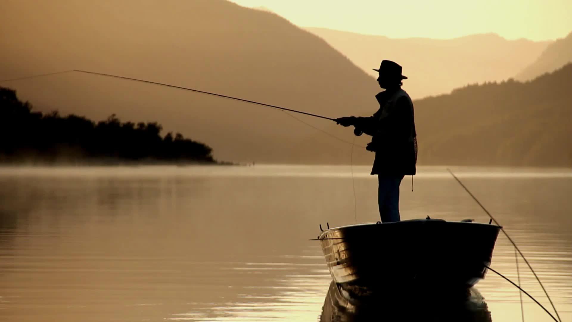 fishing GIFs
