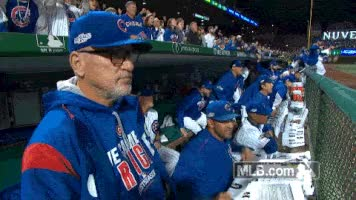Watch Chicago cubs GIF on Gfycat. Discover more related GIFs on Gfycat