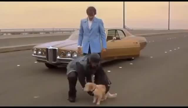 Watch and share Anchorman: Baxter Is Punted Scene GIFs on Gfycat