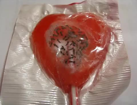 Watch and share Live Ant Lollipop GIFs on Gfycat