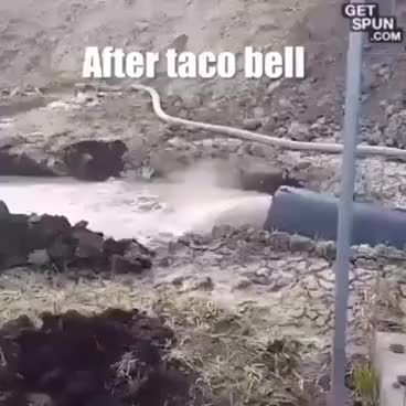 Watch and share AFTER EATING TACO BELL!!! GIFs on Gfycat