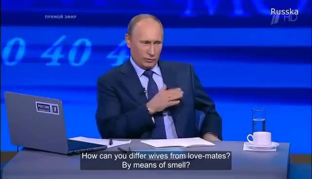 Putin SAUVAGE GIFs