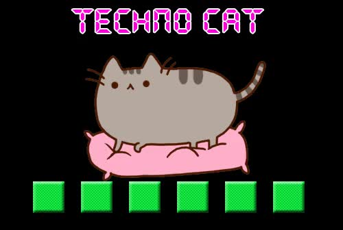 Watch and share Kitty Cat Dance Dance Dance GIFs on Gfycat