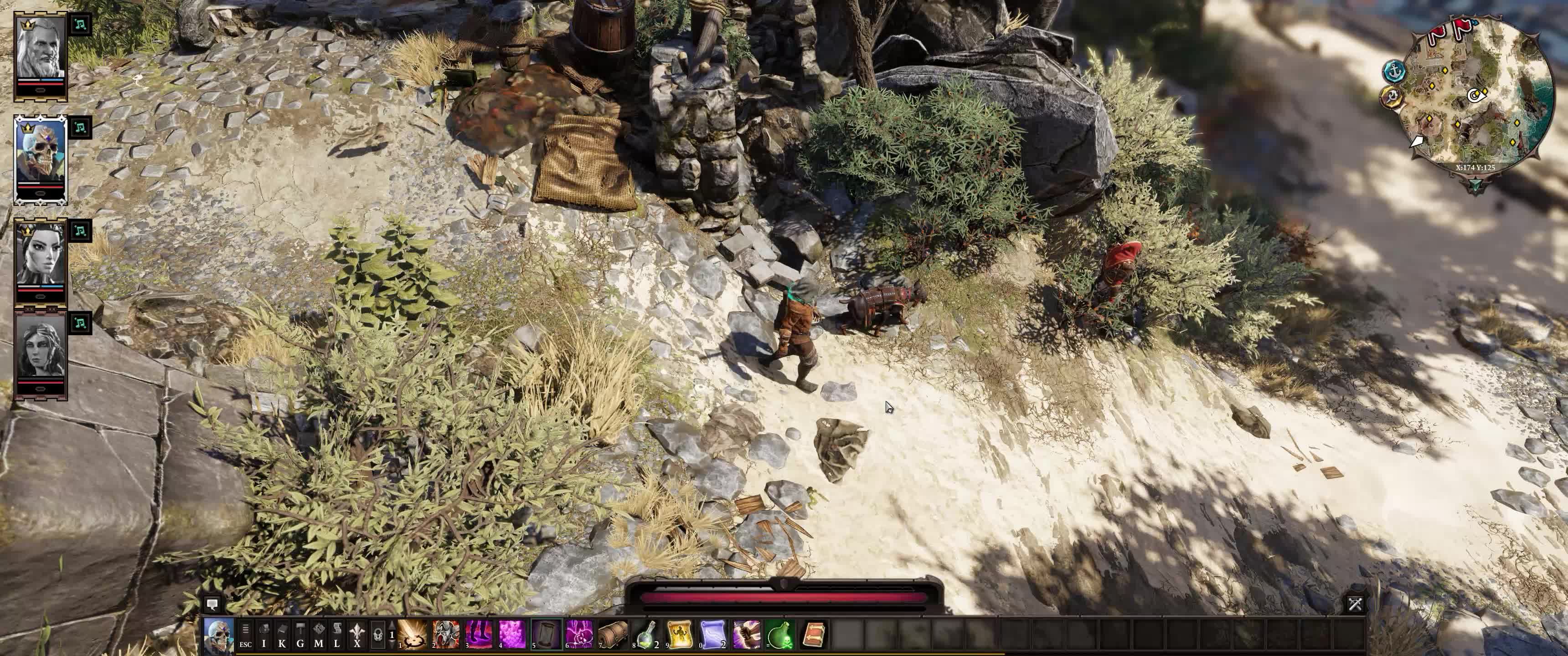 ▷ Divinity Original Sin 2 - Curing the Rat mkv GIF by