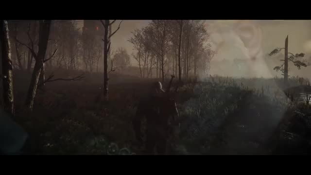 Watch Witcher 3 - STLM 2.2 GIF on Gfycat. Discover more gaming, video game, wild hunt GIFs on Gfycat