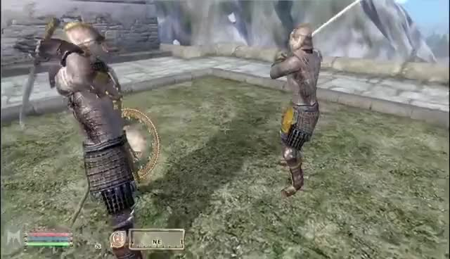 Watch and share Oblivion GIFs and Sparring GIFs on Gfycat