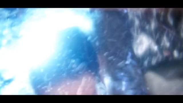 Watch and share Mrfreezy GIFs and Amazing GIFs by alanackbar on Gfycat