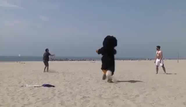 Watch and share DOG (REMI GAILLARD) GIFs on Gfycat