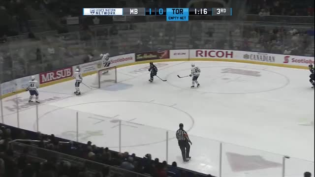 Watch and share Marlies GIFs and Toronto GIFs on Gfycat