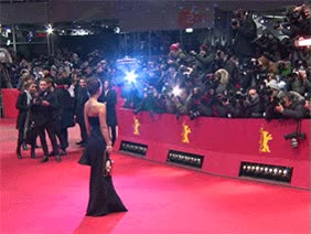 Watch and share Carpet GIFs on Gfycat