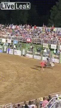 Watch and share Rodeo Bull Gets Revenge GIFs on Gfycat