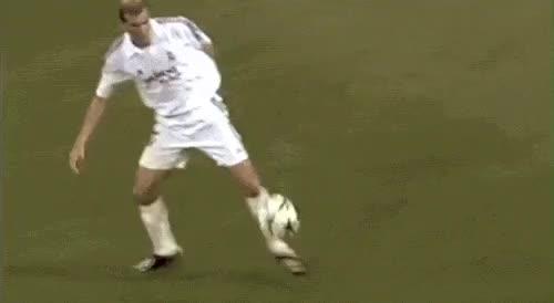 Watch and share Zidane Nedved GIFs on Gfycat
