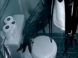 Watch and share Alien Vs Predator (Shower) GIFs on Gfycat