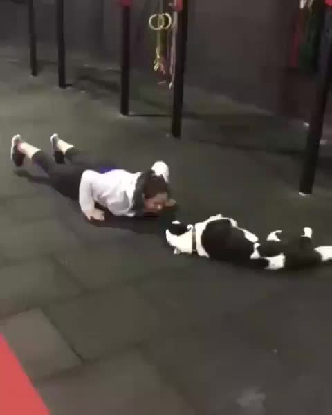 Lady had the best workout partner GIFs