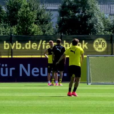 Watch and share Borussia Dortmund GIFs and Thomas Tuchel GIFs on Gfycat