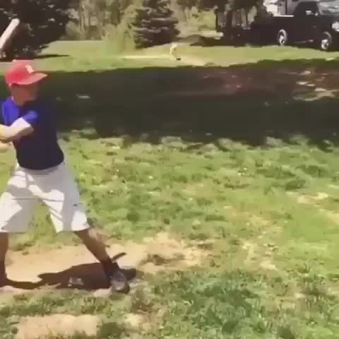 Watch I'll hit this full 2-liter bottle with a bat WCGW? GIF by Bob (@bobsagetsbaguettes) on Gfycat. Discover more WCGW GIFs on Gfycat