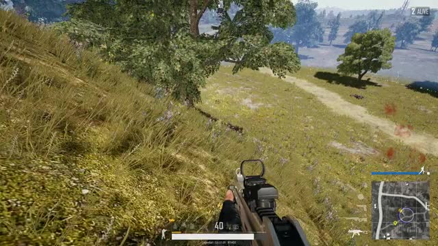 Watch and share Chicken Dinner GIFs and Headshot GIFs by itslegend on Gfycat