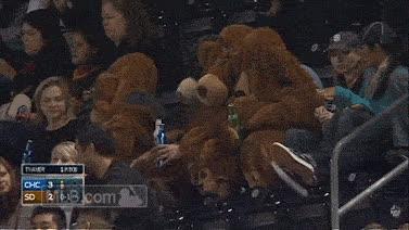 bears GIFs