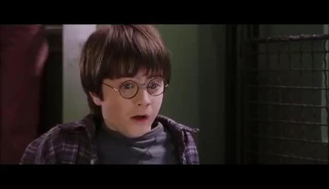 daniel radcliffe, Harry Talks to the Snake - Harry Potter and the Philosopher's Stone GIFs