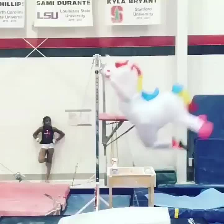 Funny, gymnastics, Magical creatures GIFs
