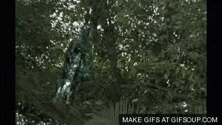 Watch and share Predator GIFs on Gfycat