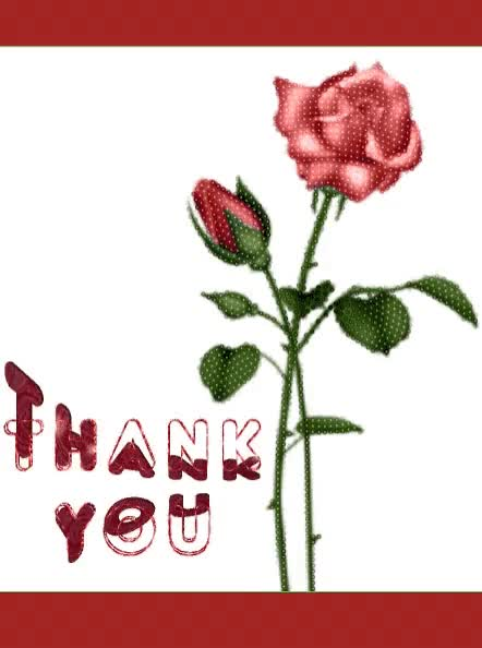 Watch Thank You GIF by ninisjgufi (@ninisjgufi) on Gfycat. Discover more Thank You, rose, thanks GIFs on Gfycat