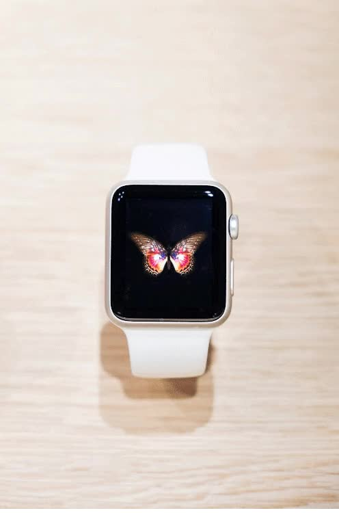 Watch and share Apple Watch animated stickers on Gfycat