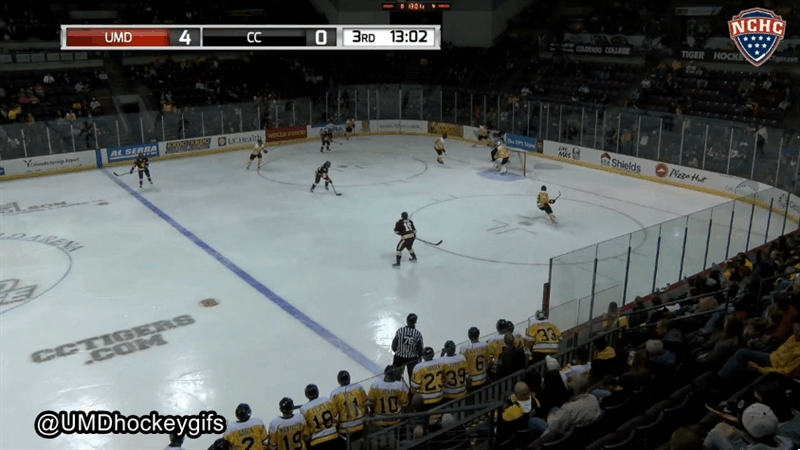 collegehockey,  GIFs