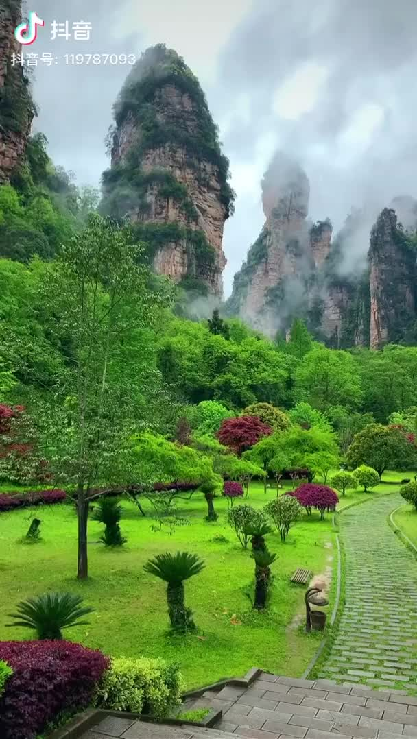Watch and share Ripsave - Behold Zhangjiajie National Forest Park - The Place Where James Cameron Drew Inspiration For The Movie Avatar GIFs by marshal on Gfycat