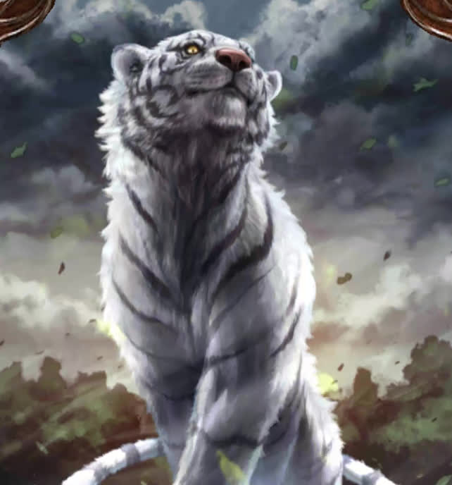 animal, animals, cat, tiger, tigers, tigress, White Tiger GIFs